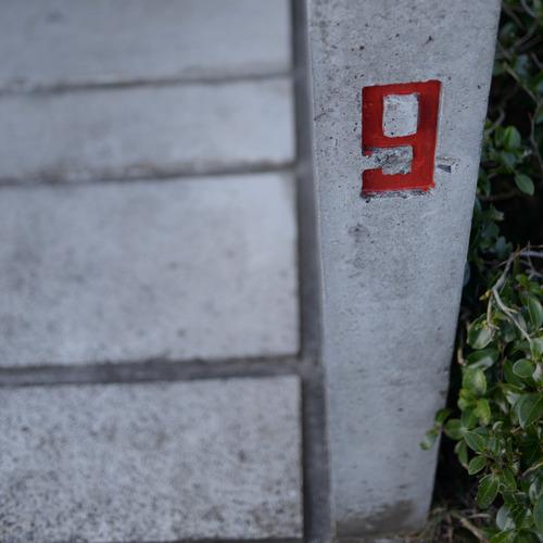 blog_00103.jpg