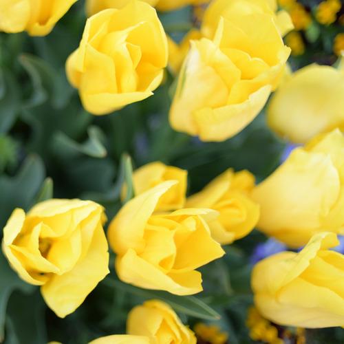 blog_01001.jpg