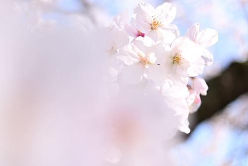 blog_01002.jpg